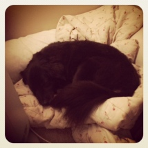 Sleeping Mary Grace